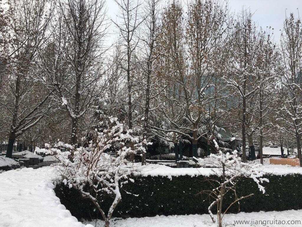 北京2020年的第一场雪03